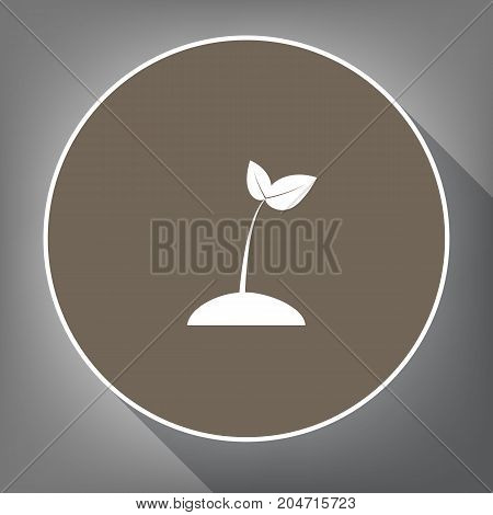 Sprout sign illustration. Vector. White icon on brown circle with white contour and long shadow at gray background. Like top view on postament.