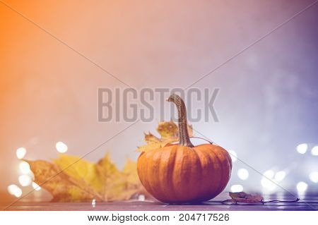 Autumn Little Pumkin With Leaves