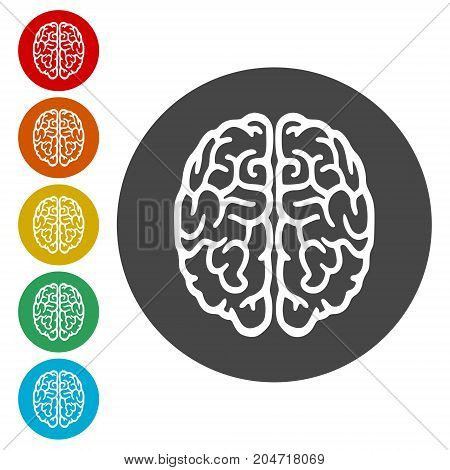 Brain icon, Brain Logo silhouette, simple vector icon