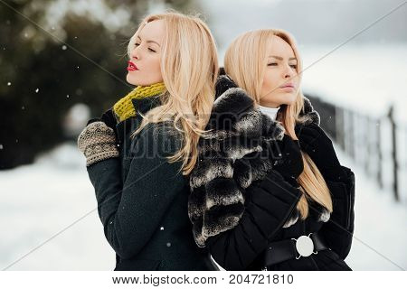 Girls with long blond hair on snow landscape. Christmas and new year. Two models in warm coat and jacket. Holidays celebration concept. Women standing outdoors on winter day.
