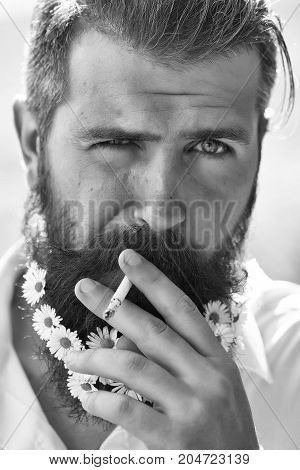 Handsome Man With Flowers In Beard