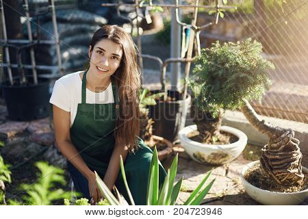 Young woman taking care of bonsai trees preparing to move them in new bowls, gardener work at its best. Looking at camera smiling.