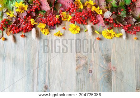 Autumn background with seasonal autumn Viburnum berries and autumn flowers on the wooden background. Autumn concept. Autumn background with space for text. Autumn still life. Autumn natural background