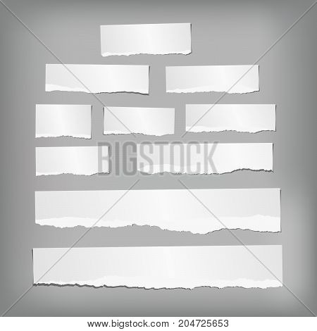 Ripped note, notebook, copybook paper strips stuck on gray background