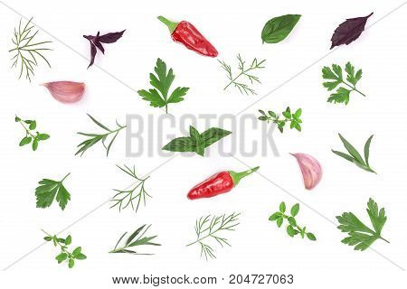 Fresh spices and herbs isolated on white background. Dill parsley basil thyme chili peppercorns garlic. Top view.