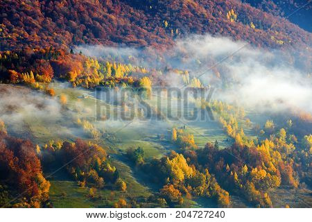 Thick fog like milk covered the valley behind which rise mountain hills on which fall warm rays of the sun.