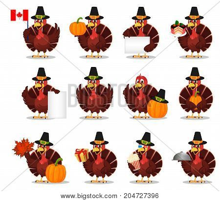Thanksgiving turkey bird wearing a Pilgrim hat. Set with funny cartoon character for holiday. Vector illustration on white background
