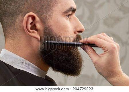 Hand of barber brushing beard. Barbershop customer, side view. Beard grooming tips for beginners.