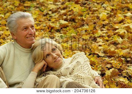 portrait of beautiful caucasian senior couple sitting on leaves
