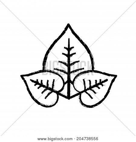 figure natural and tropical leaves vector illustration design