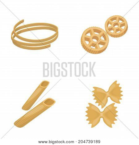 Different types of pasta. Types of pasta set collection icons in cartoon style vector symbol stock illustration .