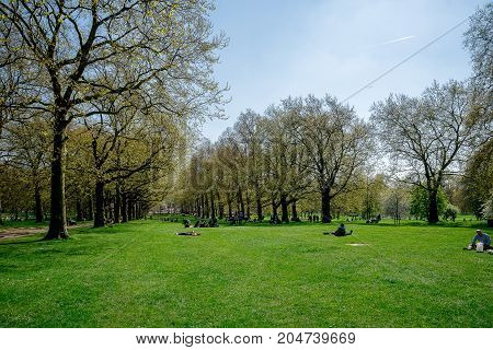 London, England, April 2017: Tree alley in spring time Green Park London Great Britain