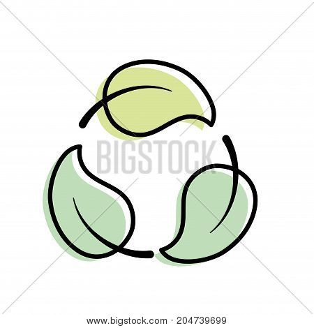 natural and tropical leaves vector illustration design