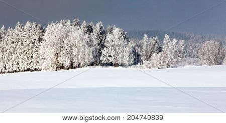 Wintry view from Bohemian and Moravian highlands white frost on forest trees and snow cowered field
