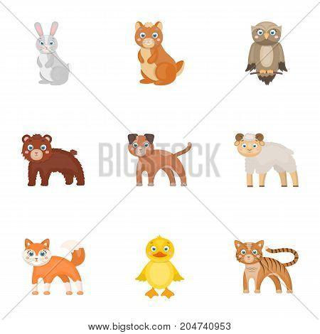 Nature, toys, farm, zoo and other  icon in cartoon style.Kangaroo, marsupial, Australia, icons in set collection.