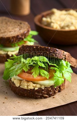 Vegan wholegrain sandwich with celery leaves tomato cucumber and chickpea spread or hummus photographed with natural light (Selective Focus Focus on the front of the sandwich)