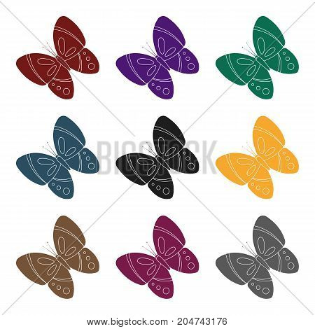 Spring butterfly. Easter single icon in black style vector symbol stock web illustration.