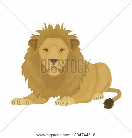 A lion, a wild and ferocious predator. Leo, the king of beasts single icon in cartoon style vector symbol stock illustration .