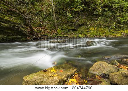 Whitewater River In Early Autumn / A river with rapids.