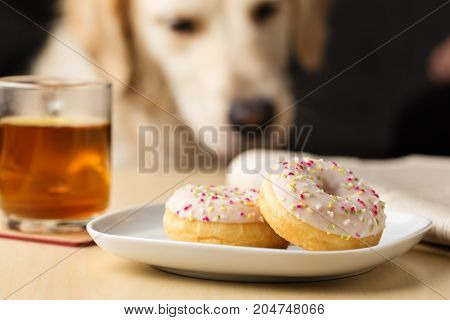 two tasty donuts with sprinkles and tee