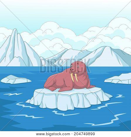 Vector illustration of Cartoon walrus on ice floe
