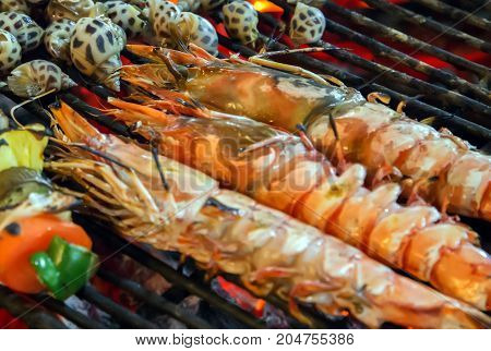 Shrimp Prawns Grilled