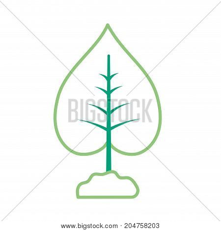 line nice plant with ground to natural ecology vector illustration