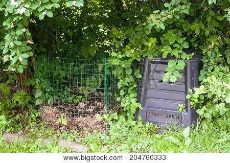 A wireframe and a plastic compost silo under a bush to keep it dark and moist