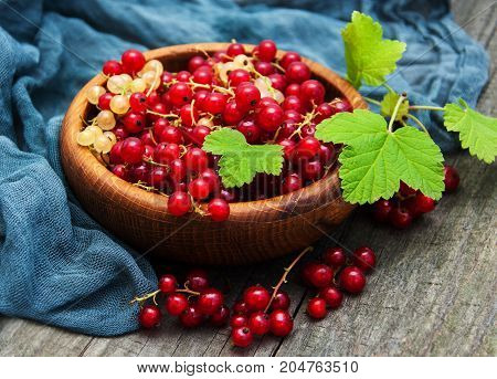 Bowl With Red Currant