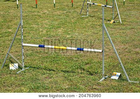 Hurdle gates of the dog agility contest
