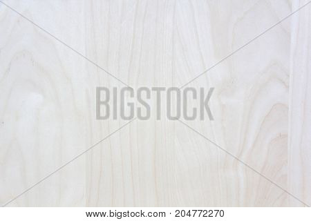 modern architecture wood tree decorative panels texture