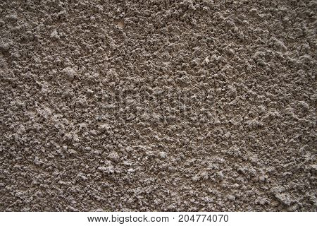 texture of bark beetle plaster on the wall background