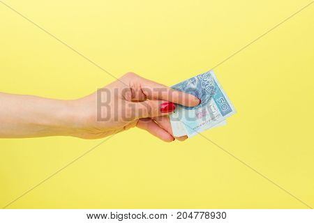 Fifty Zloty In The Woman's Hand, Yellow Background