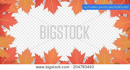 Autumn leaves frame on transparent background. Vector autumnal foliage of maple leaves. Autumn background design.