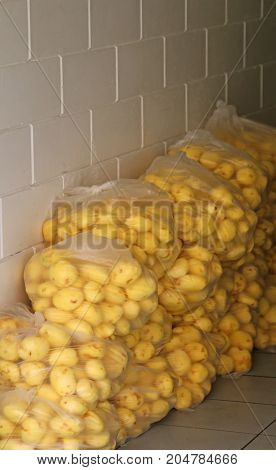 Bags Of Raw Potatoes Already Peeled In The Shop Specializing In
