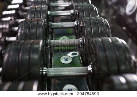 Rows of dumbbells in the gym close-up.