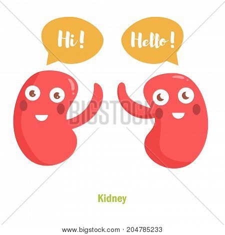 Vector cartoon kidney with face. Isolated art on white background. Flat