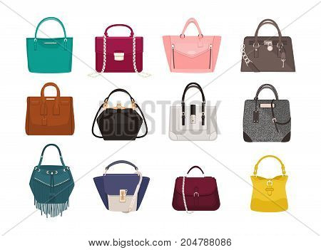 Set of stylish women s handbags - tote, shopper, hobo, bucket, satchel and pouch bags. Trendy leather accessories of different types isolated on white background. Colorful vector illustration