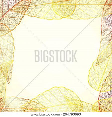 Bright golden autumn leaves abstract frame. Orange abstract background. Vintage graphic foliage backdrop decoration. Vector illustration