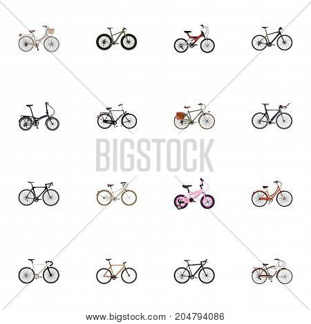 Realistic Folding Sport-Cycle, Working, Journey Bike And Other Vector Elements