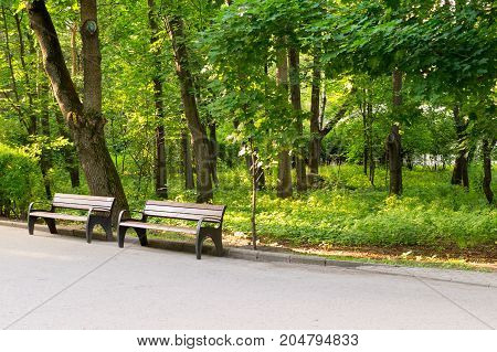 path with bench in a quiet summer park. background nature.
