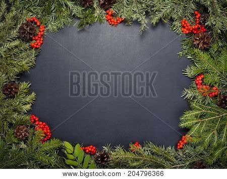 Christmas framework with evergreen fir tree cones and holly berry on chalkboard background