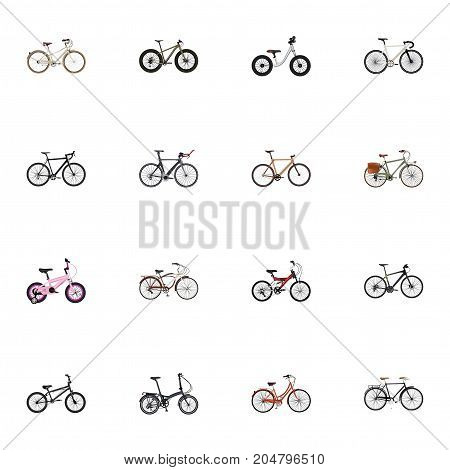 Realistic Bmx, Folding Sport-Cycle, Hybrid Velocipede And Other Vector Elements