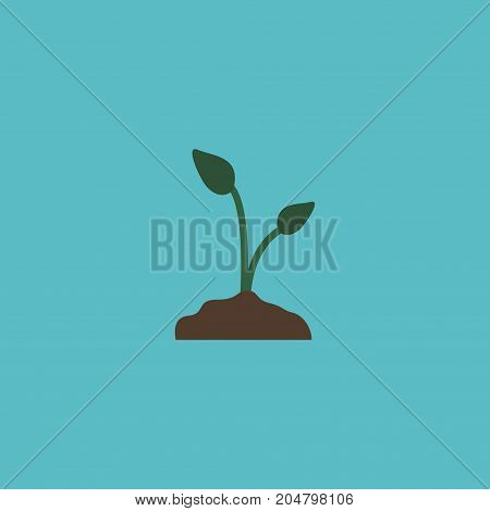 Flat Icon Sow Element. Vector Illustration Of Flat Icon Sprout Isolated On Clean Background