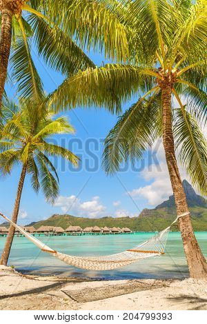 Empty hammock between palm trees on tropical beach of Bora Bora island