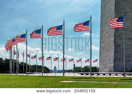 American flags near Washington Monument and Capitol building in background, Washington DC, United States.
