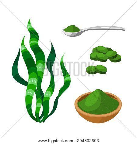 Superfood fruit. Kelp grass and powder spirulina . Vector illustration cartoon flat icon isolated on white.