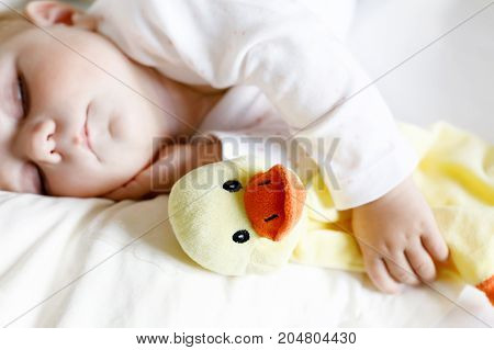 Cute adorable baby girl of 6 months sleeping peaceful in bed at home. Child holding plush toy duck. Closeup of beautiful child, little newborn kid sleeping. Selective focus on toy.
