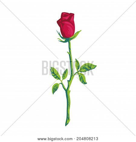 Silhouette red rose element Rose icon isolated on white background stock