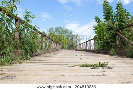 Bridge over the river. Both plants and trees grow on both sides of the bridge. On the background is blue sky with white clouds.